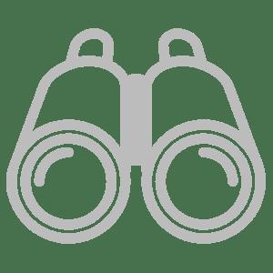 AWS Elasticsearch Monitoring