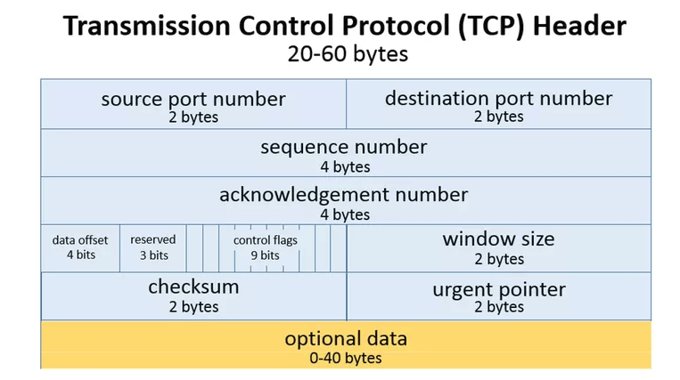 TCP Packet Headers