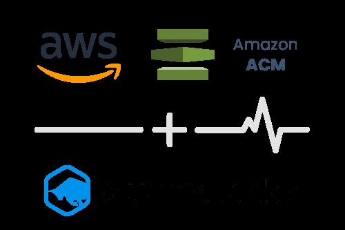 Integration-AWS-ACM-BlueMatador