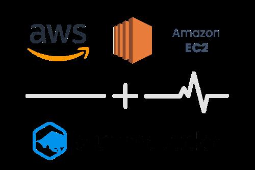 Integration-AWS-EC2-BlueMatador