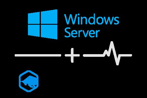 Integration-Windows-Server -BlueMatador