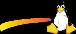 Linux: Ubuntu, Red Hat, Debian, CentOS